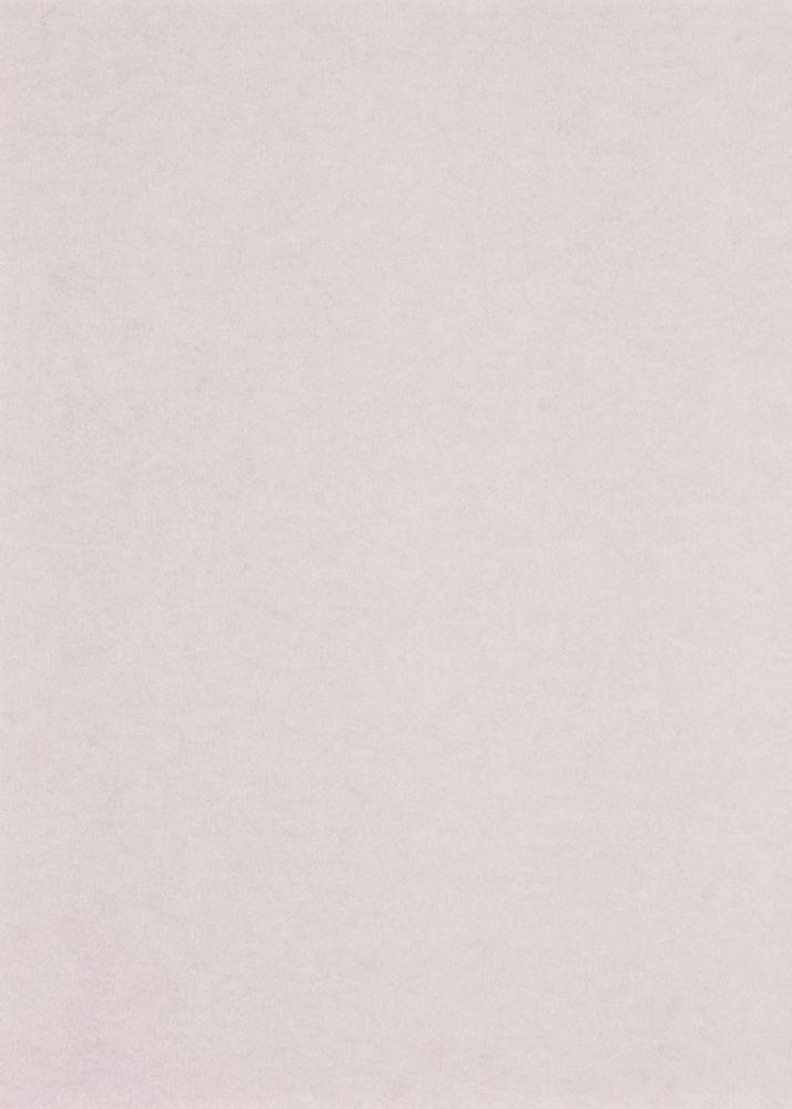Seinapaneel Clicwall Paint Grundier 50 MAT 10x600x2785