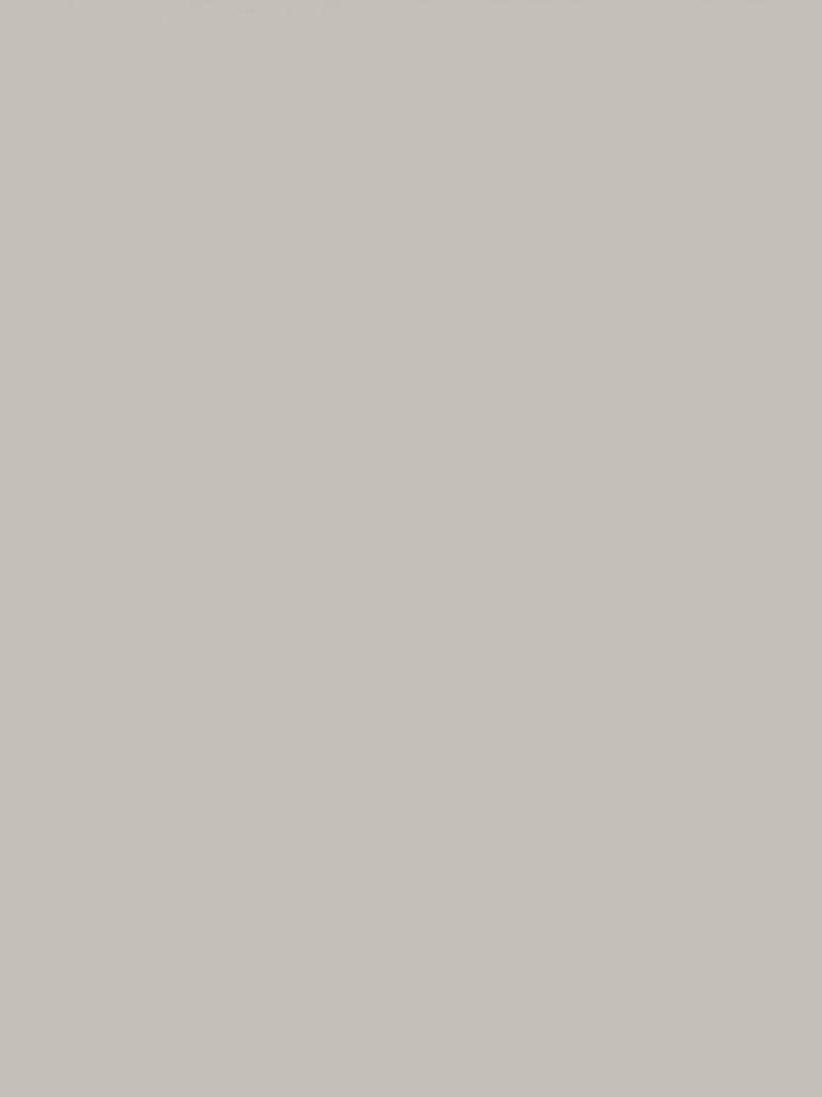 Seinapaneel Clicwall UNI Silicon 625 CST 10x600x2785