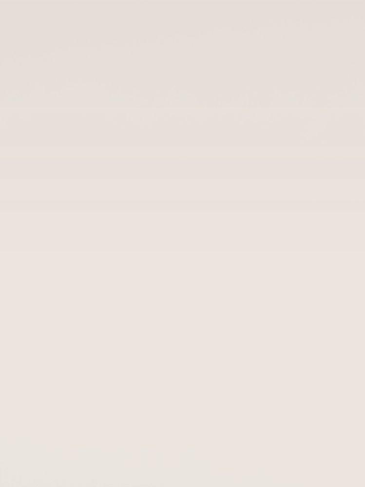 Seinapaneel Clicwall UNI Seashell U147 CST 10x600x2785